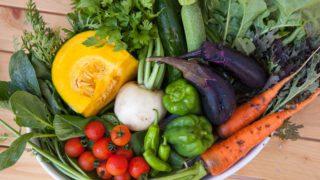 ビタミンCの効果と多く含む食品
